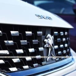 Ốp Mặt Ca Lăng Peugeot 508